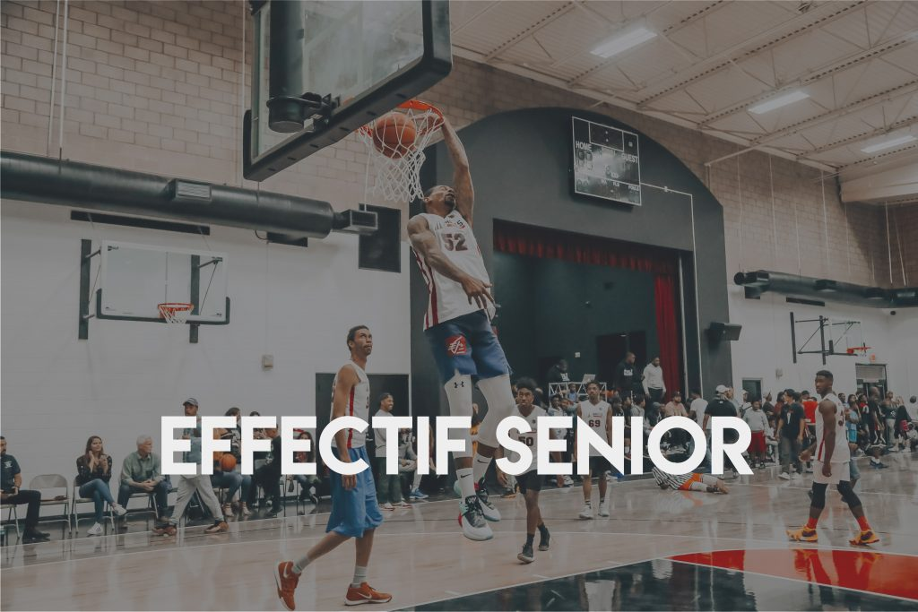 Effectif senior